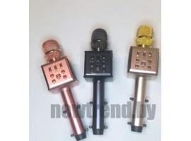 Беспроводной караоке микрофон Happyroom H59 с держателем для телефона