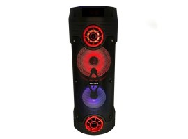 ZQS-6202 BT Speaker портативная Bluetooth колонка с микрофоном и пультом ДУ